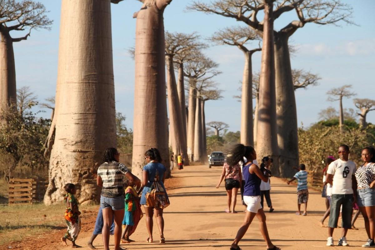Allée des Baobabs par Morondava Autrement