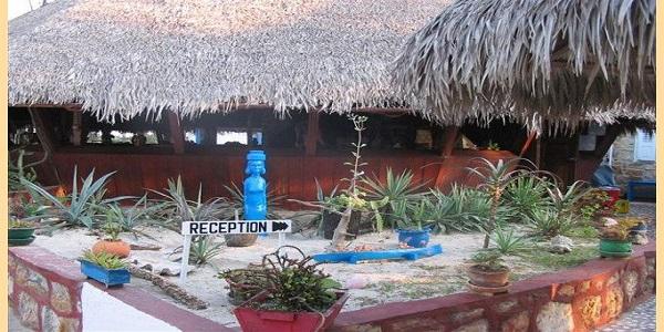 Chez corail