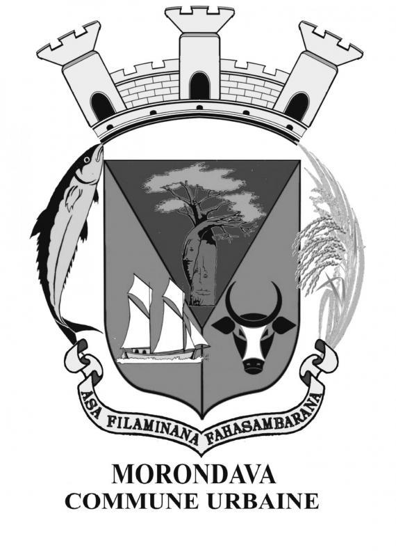 Logo n b officiel