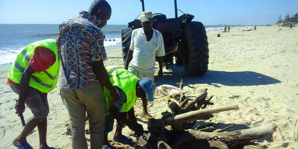 Nettoyage de la palge nosy kely 4