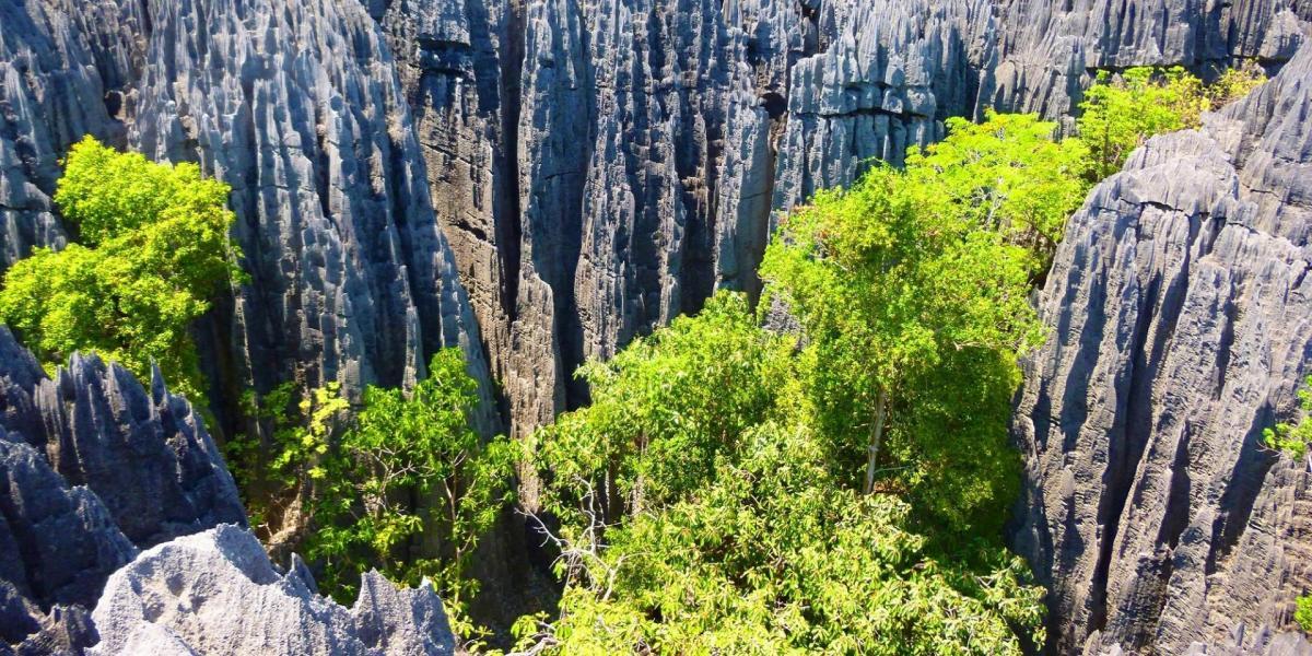 Tsingy de bemaraha 2000 1000